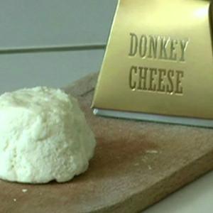 pule-donkey-cheese-550x309