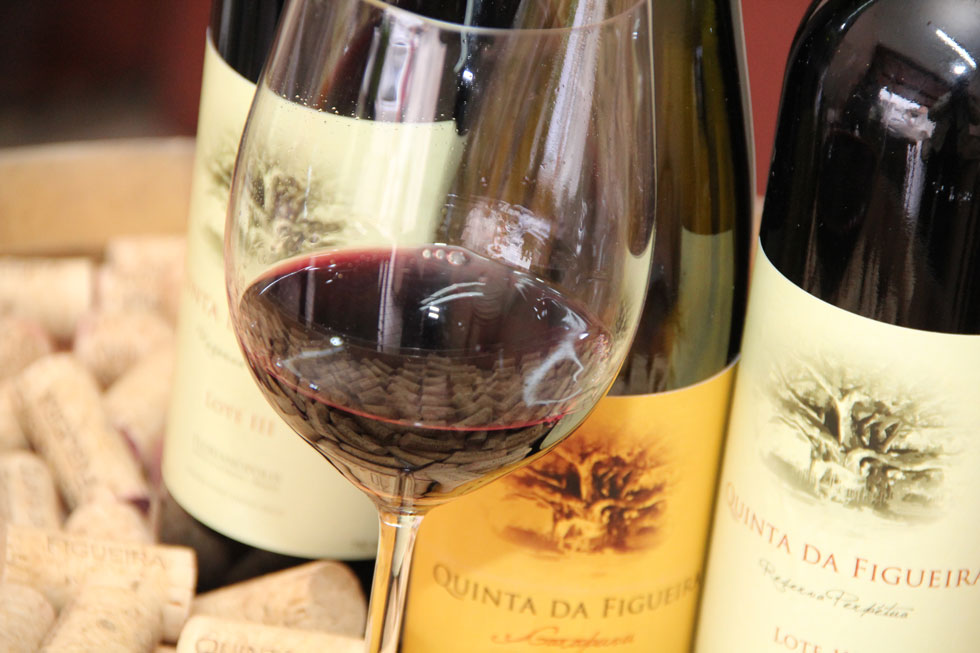Vinho Arte da Vinha é produzido por Eduardo Zenker no Rio Grande do Sul (Foto: Divulgação)
