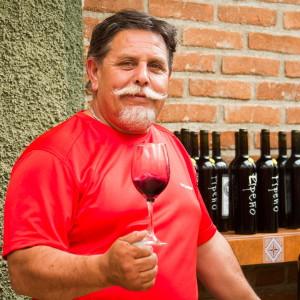 Vinho possui sabor fresco (Foto: Divulgação)