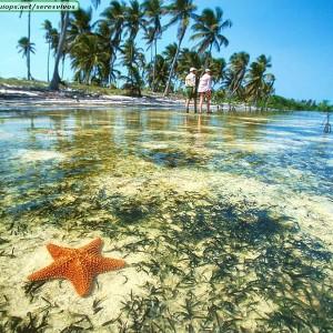 Praia México (Foto: Divulgação)