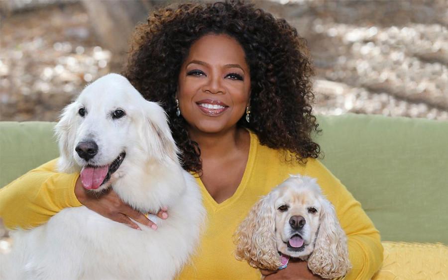 Oprah Winfrey e seus pets (Foto: Divulgação)