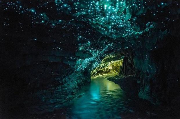 gruta na nova zelândia (foto: divulgação)