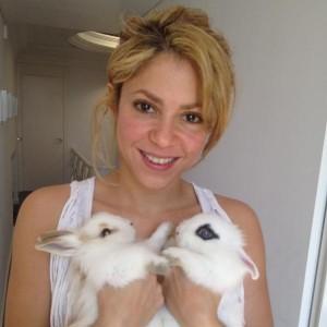 Os pets da Shakira (Foto: Divulgação)