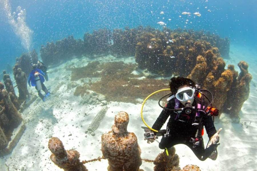 Visita pode ser feita com aparelho de mergulho (Foto: Divulgação)