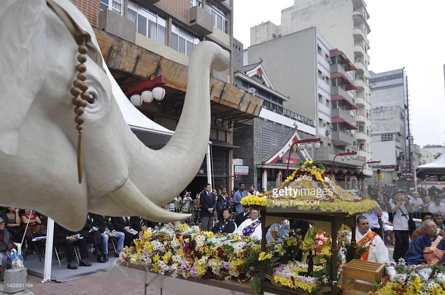 Festival das flores (Foto: Divulgação)