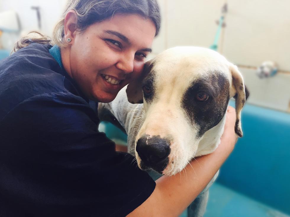 Funcionária da clínica veterinária durante banho do pet (Foto: Divulgação)